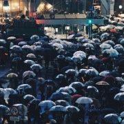 umbrella image crop