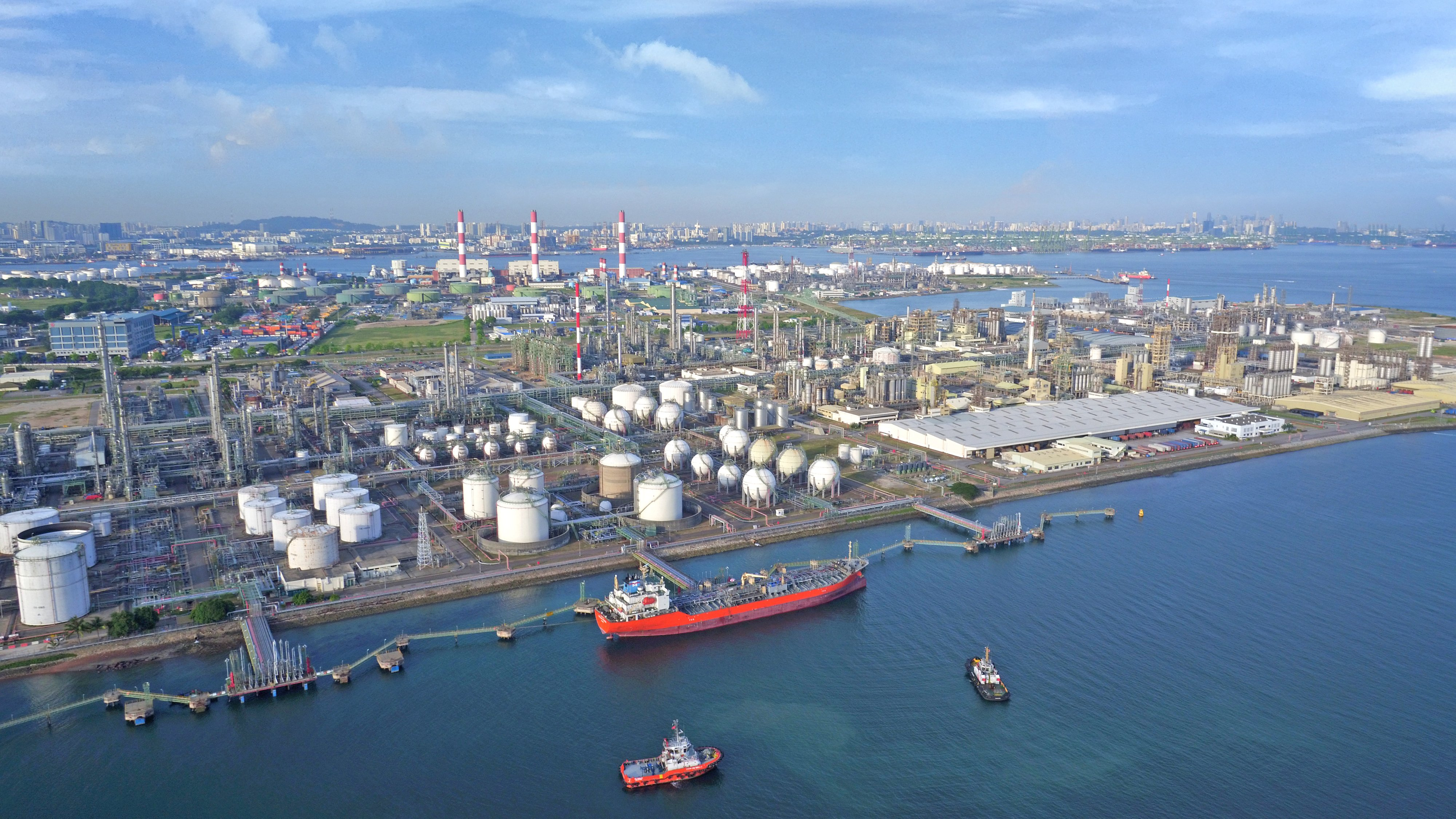 Creating A Petrochemical Hub Vision Versus Reality